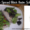 Spicy Chipotle & Salsa Black Beans and Vegan Soft Tacos
