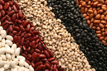 health building nutrition the four food groups blacks